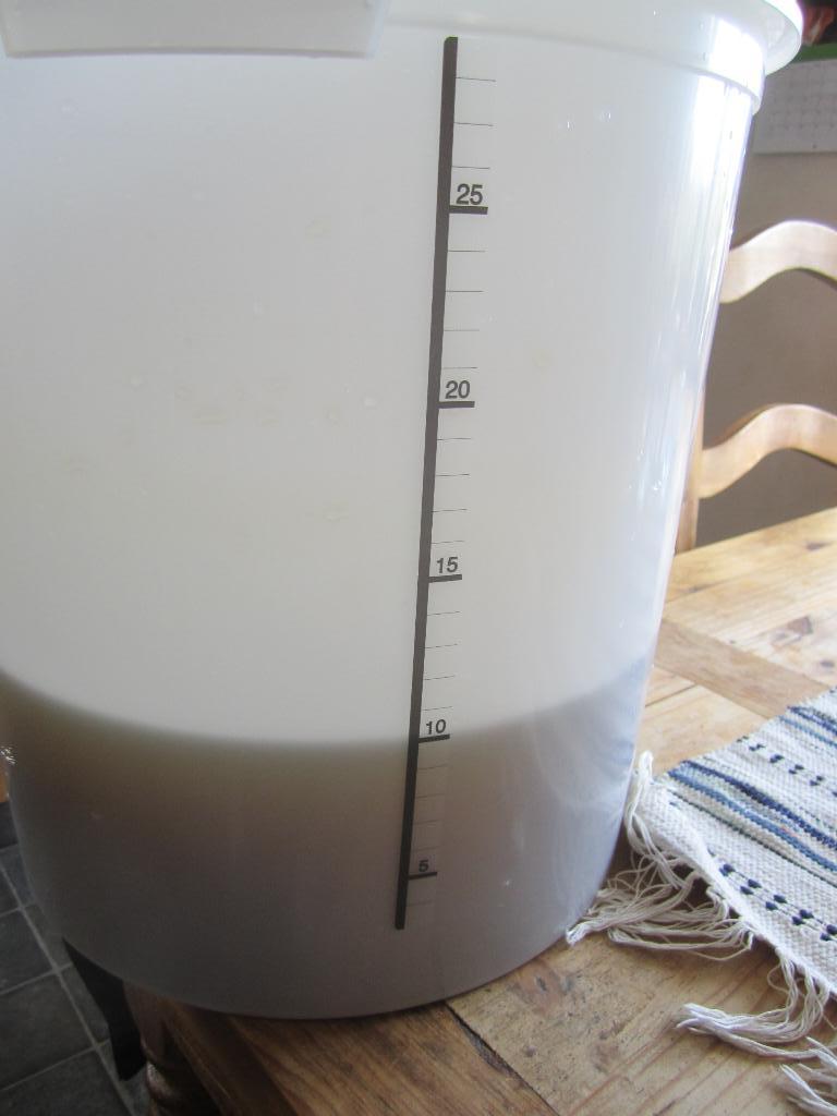 Utspädd avkok 10 liter maskrosvin ca 30 grader