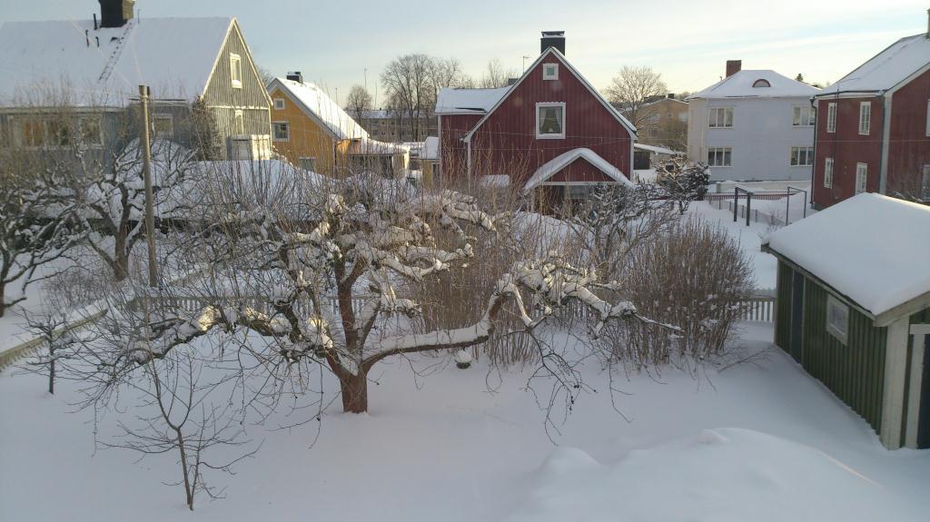 Brynäs i snöskrud